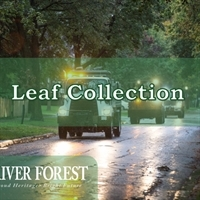 Fall Leaf Collection Extended through December 7, 2018
