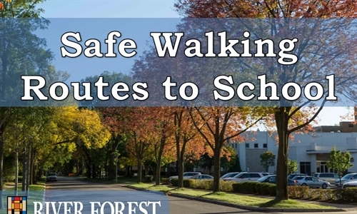 Safe Walking Routes to School